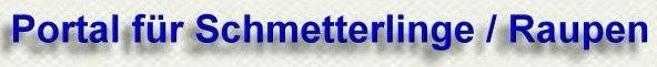 schmetterling - raupe : Portal f�r Schmetterlinge und Raupen